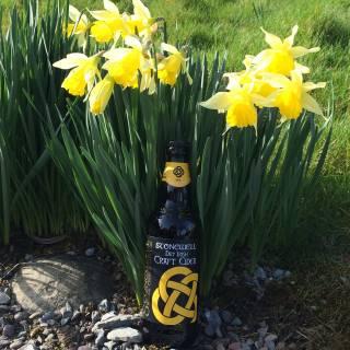Stonewell Dry Cider premium Irish craft cider