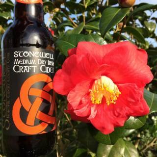 Stonewell Medium Dry Cider - premium Irish cider